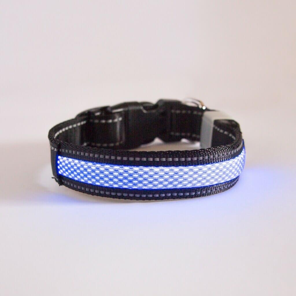 Borealis Collar (Blue Atom)