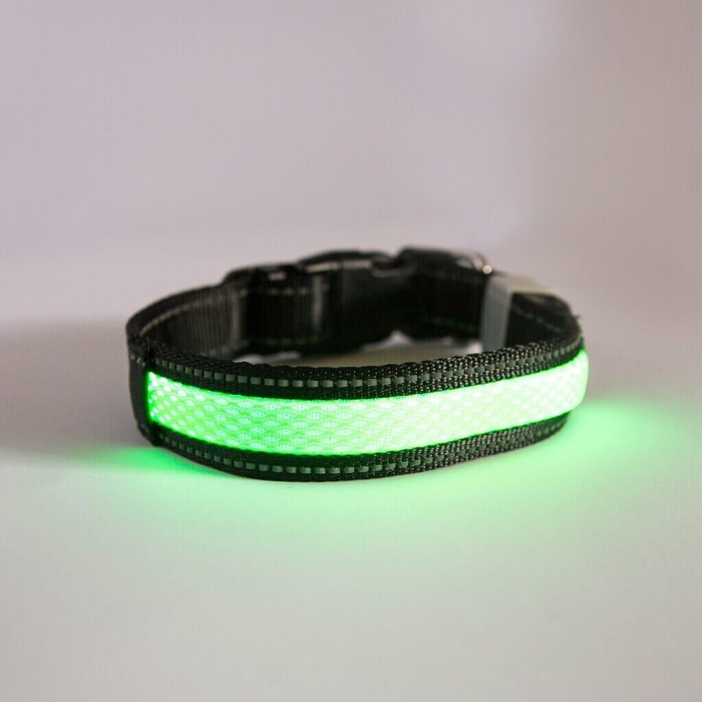 Borealis Collar (Green Photon)