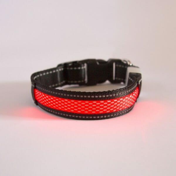 Borealis Collar (Red Atom)